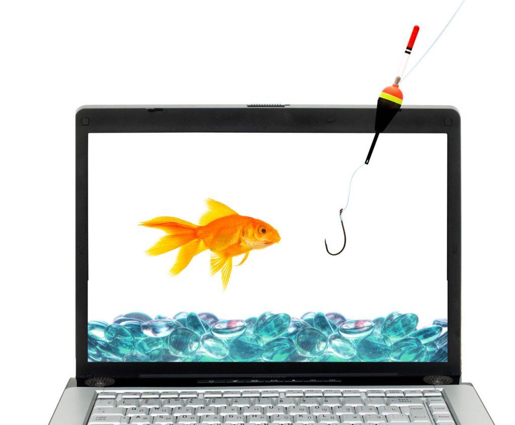 goldfish and hook